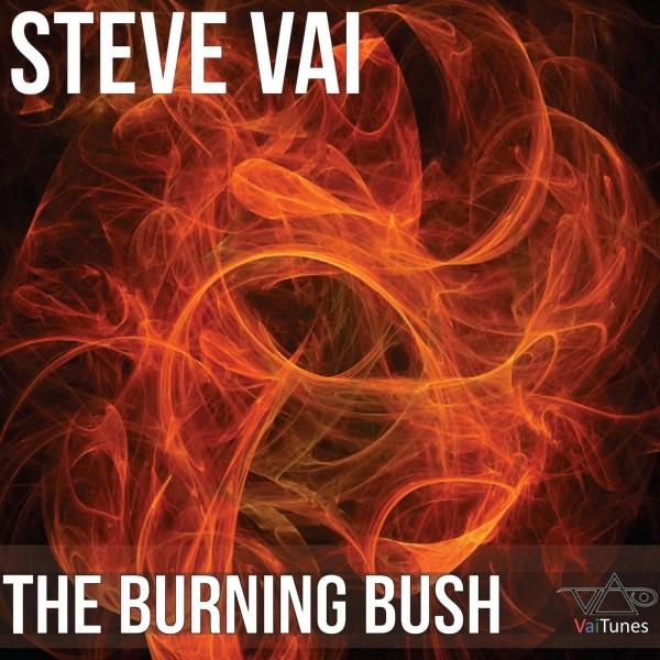 stevevai.it - The burning bush
